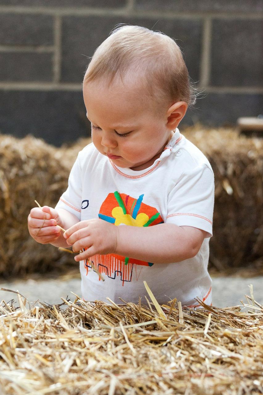 farming young farmer loans